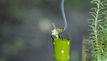 Videi draudzīga lielā pavasara tīrīšana: eksperti aicina domāt par sadzīves ķīmijas izvēli