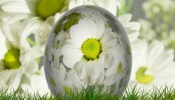 Kā pavasarī  uzlabot pašsajūtu un attīrīt organismu.
