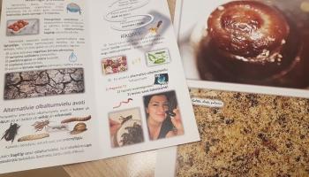 Альтернативные источники белка: черви и насекомые как пища