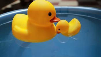 Латвийские дети должны стать водоплавающими