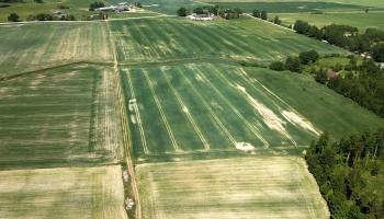 Latgalē lielāko daļu apstrādājamās zemes lauksaimnieki nomā