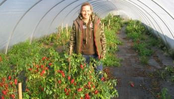 Latvijā lielākā čili piparu audzētāja - Loreta Birzule Valgundē