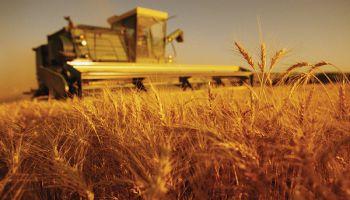 Eiropas Komisija uzsākt sabiedrisko apspriešanu par ES Kopējo lauksaimniecības politiku