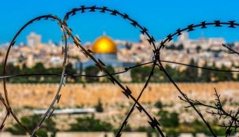 Посол Израиля: ХАМАС - не легитимное правительство, а террористическая организация