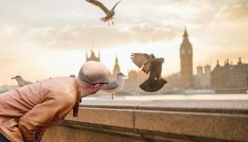 Kā putns ieveda cilvēku citā pasaulē