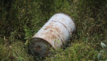 В латвийских лесах за последний год существенно выросло количество мусора