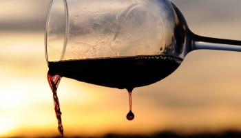 Pieaug vecāku skaits, kas stresa mazināšanais izmanto alkoholu