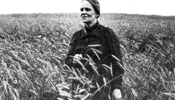 Vizma Belševica –  izcila personība 20. gadsimta otrās puses latviešu literatūrā