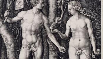 Откуда у Адама появилась Ева: научный подход к мифу.