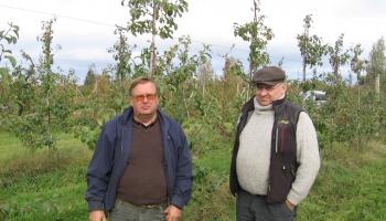 Lielākajā augļu dārzā Latvijā - Viesītes novada Saukas pagasta Lonē