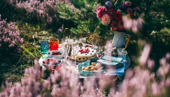Perfekta piknika noslēpumi