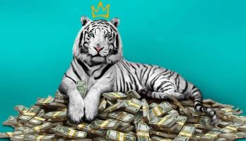 """Pieci skatās """"Balto tīģeri"""" no Indijas"""