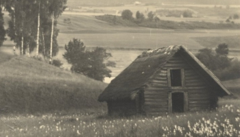 Vai zini, kad Latvijas pļavās parādījās tik pazīstamie siena šķūnīši?