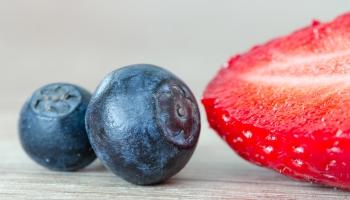 Генная инженерия растений. Почему ГМО - не биологический термин?