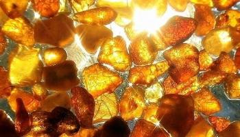 Золото Балтики на подиуме