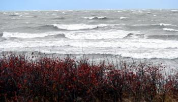 Stiprā vēja postījumi: dažviet traucēta elektroapgāde, nogāzti koki, cietušo nav