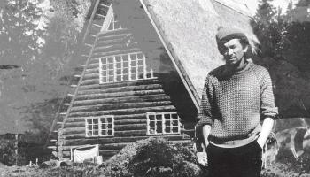 Imants Ziedonis (1933 – 2013)