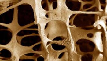 Остеопатия: медицинская дисциплина или нетрадиционный метод лечения?