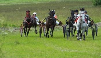 Latgales straujie zirgi un rikšotāju sacensības