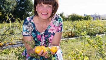 Dobeles dārzkopības institūta vadošā pētniece Edīte Kaufmane