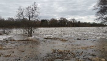 Cilvēka un dabas attiecības: izmaiņas plūdu norisē, bioloģiskās daudzveidības ekonomika