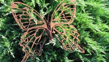 """Zaļās ekonomikas ievadforums """"Green Expo Riga"""": bites lidos, kur viņas pašas gribēs"""