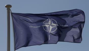 Расширение партнерства НАТО с Украиной