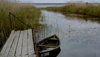 Озеро Энгурес: королевство диких птиц