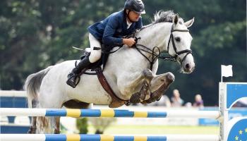 Спортивное коневодство: вопрос на миллион? (ВИДЕО)