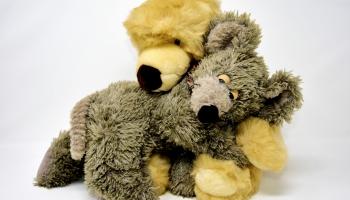 Lācis un pele