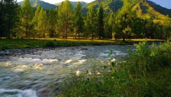 Алтай. Путешествие по Сибирской Швейцарии