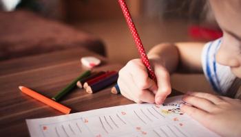 Трудности перевода: школа и язык