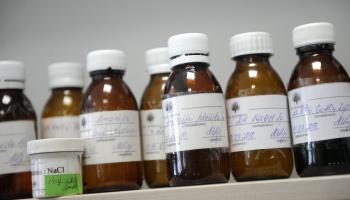 Инесе Свиестиня: всю жизнь учусь правильно подбирать лекарства