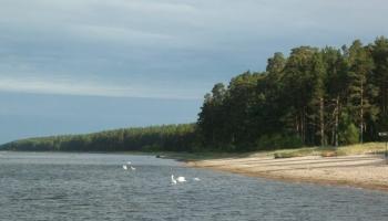 Aizsargājamās teritorijas jūrā