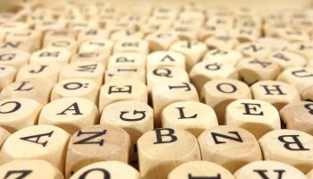 Парадоксы языка: почему языки такие разные?