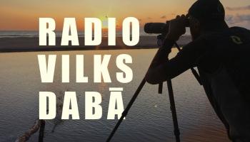 """Jauns raidījums par dabu """"Radio vilks dabā"""""""