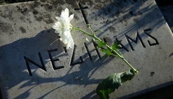 75 годовщина разгрома нацизма: как это было в Европе и в России