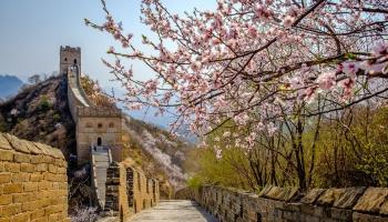 Пекин. Город храмов и пуделей