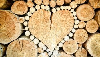 Mīlestība un sirdslietas: Kā tieši sirds kļuvusi par iemīlēšanās simbolu?