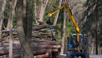 Kokmateriālu cenu kāpums būtiski audzē pieprasījumu pēc jaunas meža tehnikas