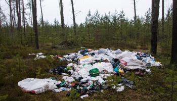 Mežs joprojām vieta, kur izmest atkritumus