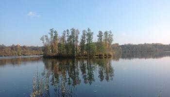 Плавающие острова озера Унгурпилс