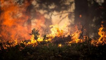 Divas puslodes:  ASV - Irānas konflikts. Austrālijas mežu ugunsgrēku ietekme uz politiku