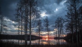 Zemā ūdens līmeņa dēļ Lubāna ezerā pastāv zivju slāpšanas risks