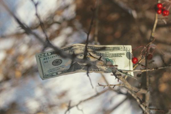 Ekonomiskā vardarbība ģimenē: manipulācijas ar ekonomisko iespēju sašaurināšanu ir dažādas
