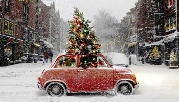 """""""Ziemassvētku eglulīte"""" - rotaļīga un mīļa eglītes cildināšanas dziesma"""