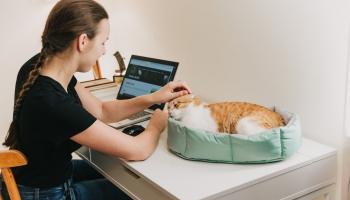 Лидия Бреска: Идею для бизнеса нам подсказали кошки