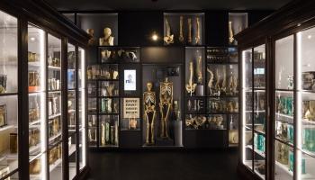 Apmeklētājiem durvis vēris jaunais Anatomijas muzejs