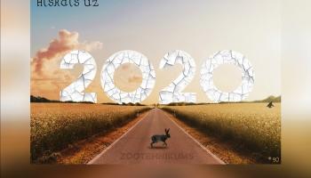 Atskats uz 2020. gadu