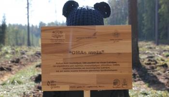OMA jeb mazoglekļa mežu stādīšana. Stikla šķirošanas nepieciešamība